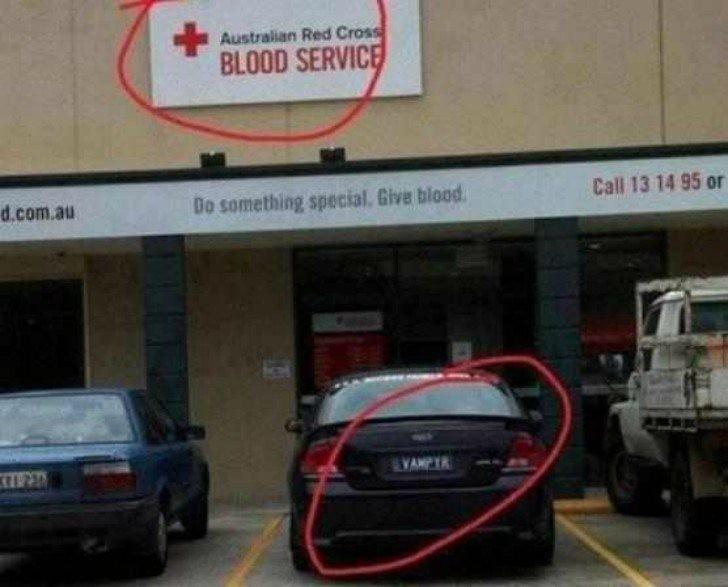 """3. """"Wampir"""" oddaje krew"""