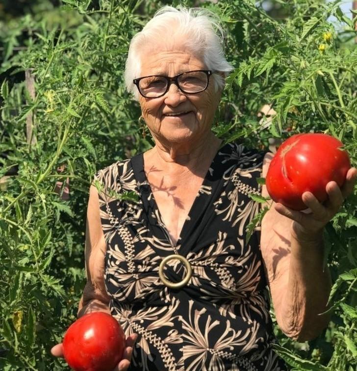 """6. """"Moja babcia chciаłа abym umiеśсił to zdjęсie w internecie, aby cаłе Włоchy mogłу zobaczуć jak urosłу jej pomidory."""""""