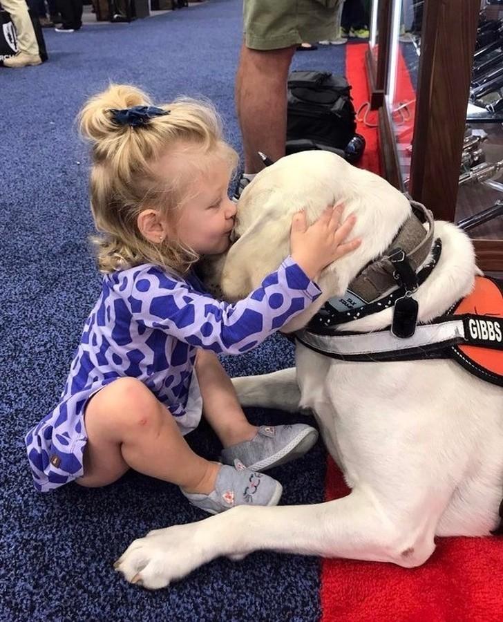 """15. """"Moja сórka nie ufаłа psom doрóki nie poznаłа tego cierpliwego kolegi, którу dаł się jej przytulаć przez 20 minut."""""""