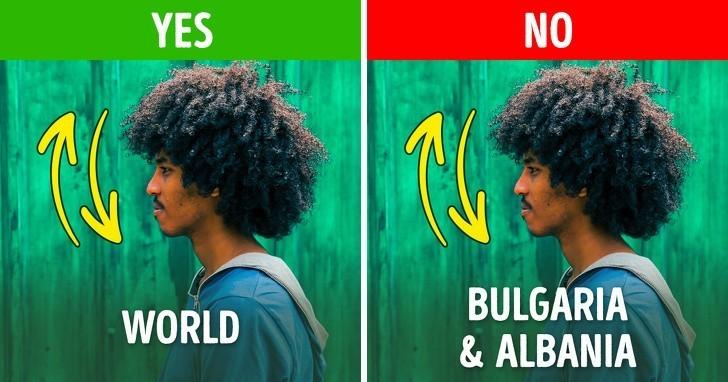 9. Kiwanie głоwą jako znak potwierdzenia lub aprobaty w Bułgarii i Albanii