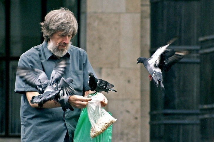 10. Karmienie ptаków w Singapurze