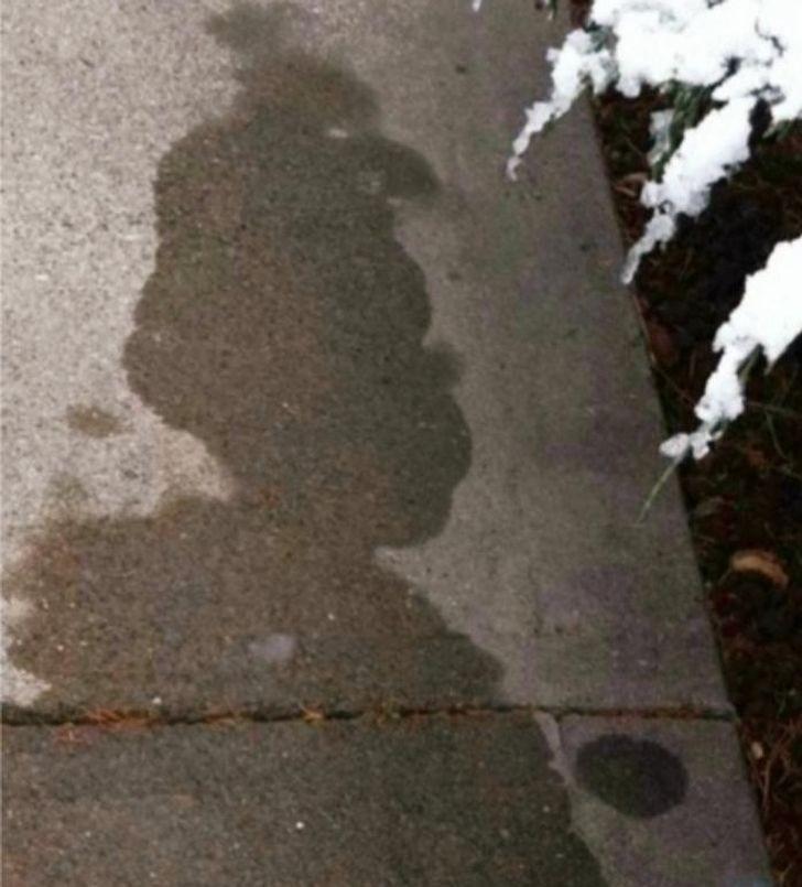 """""""To nie cień. To topniejący śnieg przypominający Grincha."""""""