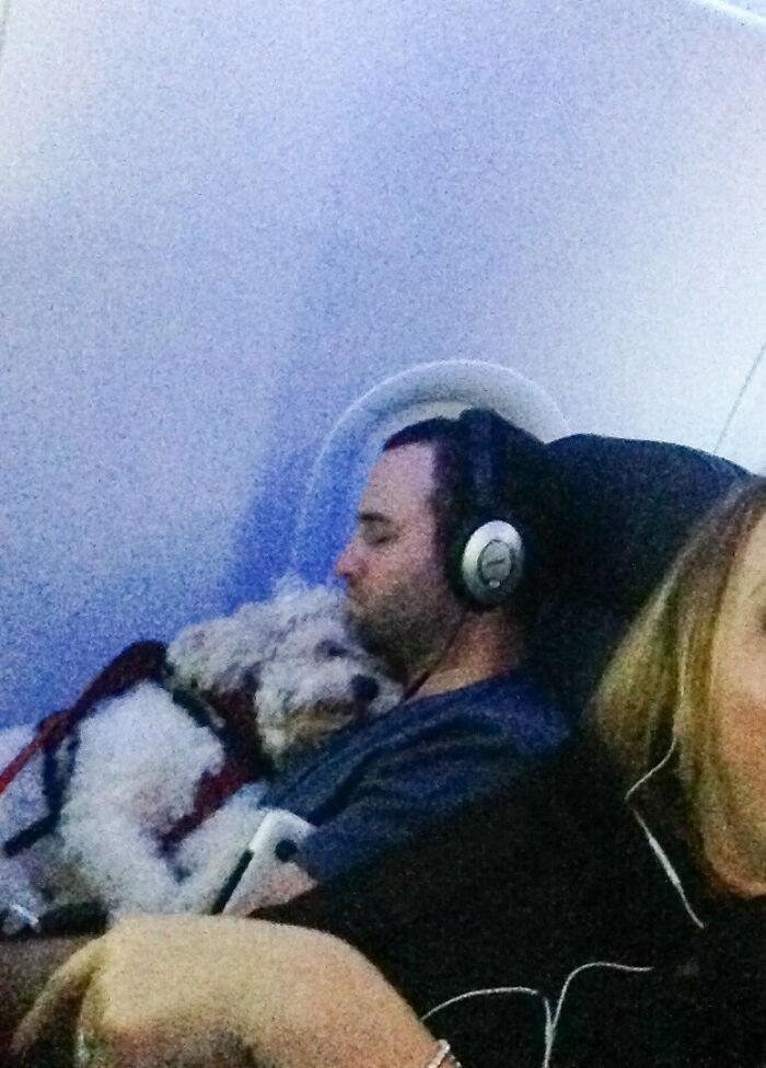 """""""Lecę samolotem wspólnie z tym facetem i jego psem. Śpią tak od dwóch godzin."""""""