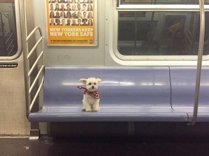 Podróż metrem o północy