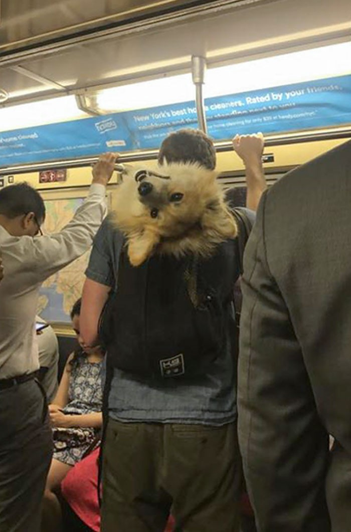 """""""Pozdrowienia z nowojorskiego metra."""""""