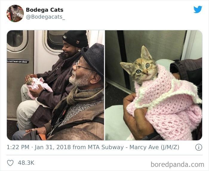 """""""W metrze"""""""