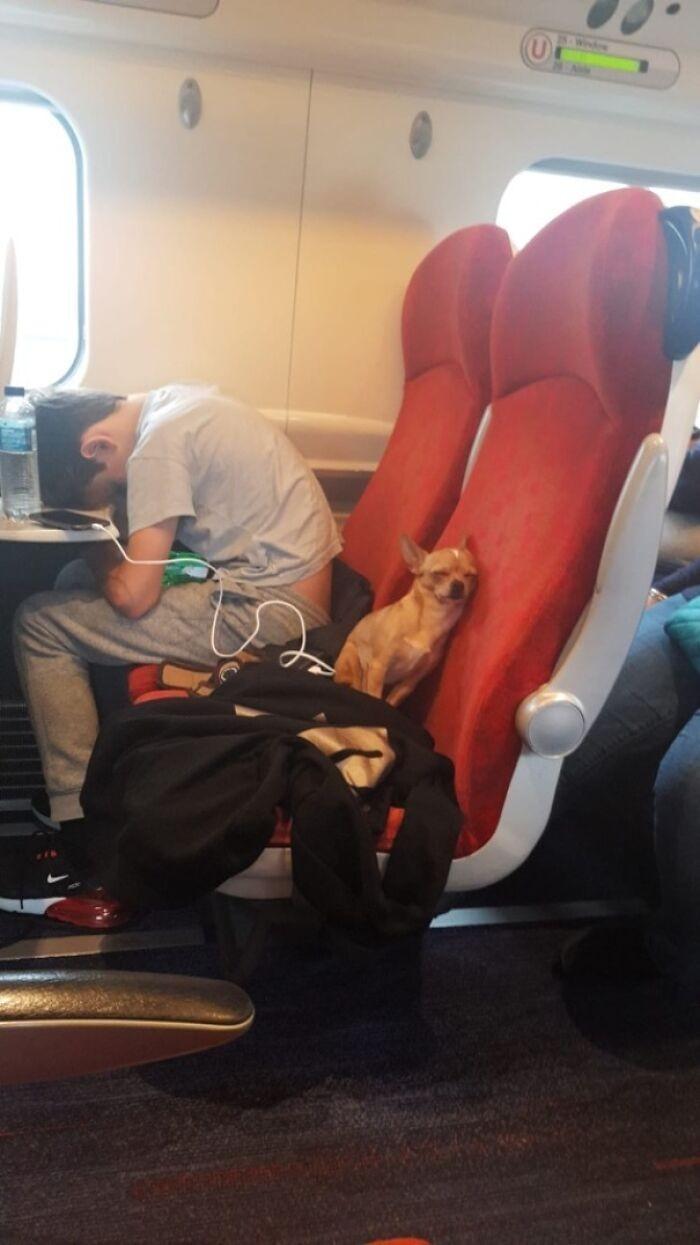 """W pociągu do Manchesteru"""