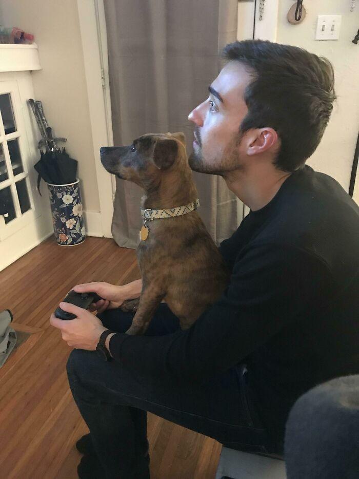 """""""Mój chłopak i mój pies podczas wspólnego grania"""""""