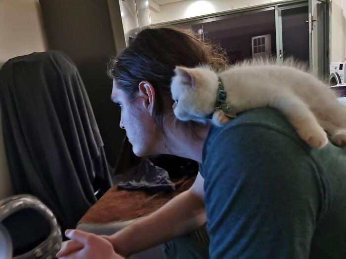 """""""Mój kot oglądający Mandaloriana z moim chłopakiem"""""""