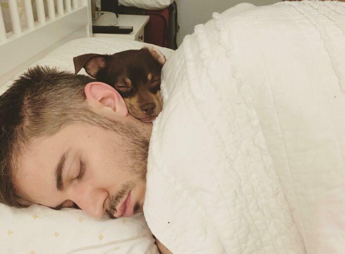 """""""Obudziłam się i zobaczyłam męża i naszego psa, śpiących sobie w najlepsze."""""""