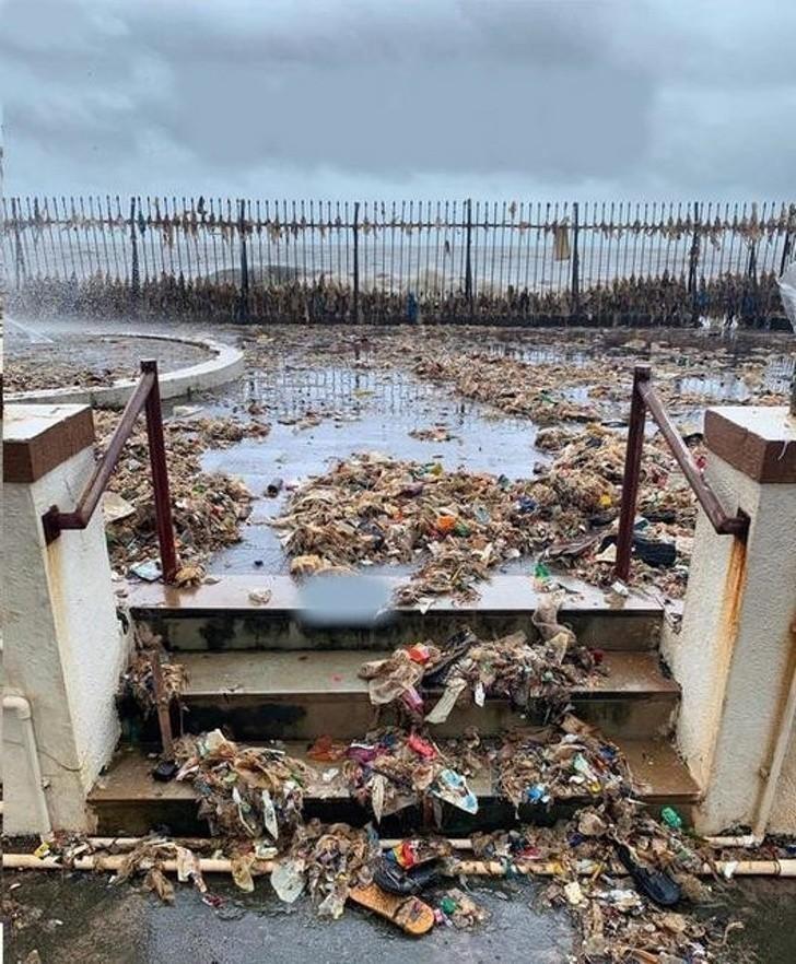 12. Smutna pozostałość przypływu oceanu