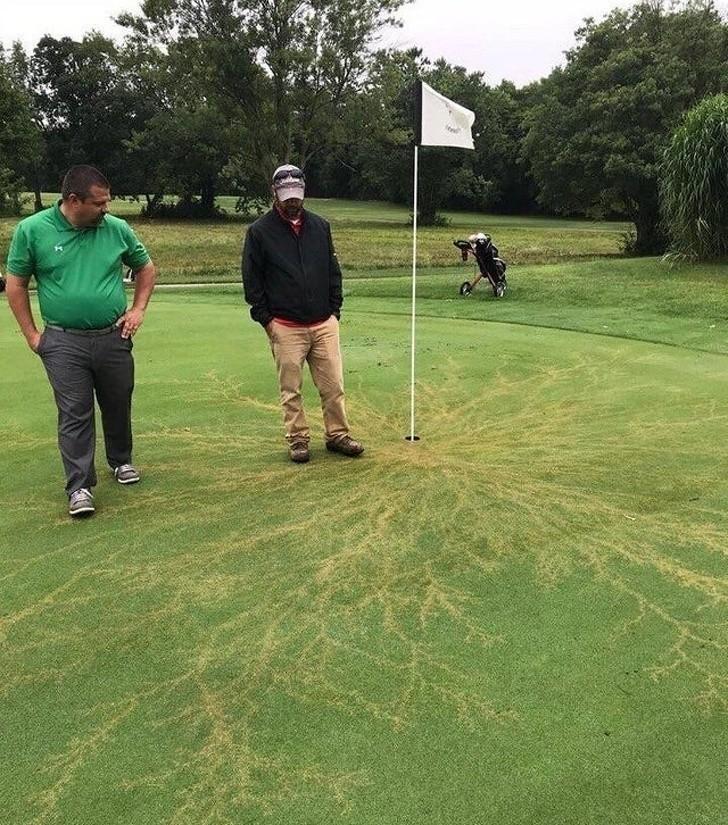 10. Efekt uderzenia pioruna w chorągiewkę na polu golfowym