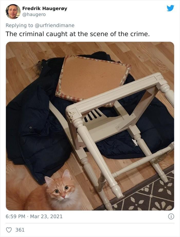 Przestępca przyłapany na gorącym uczynku