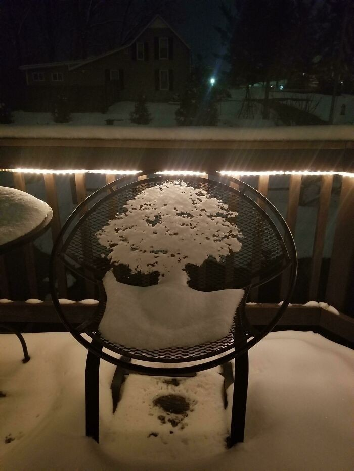 Topniejący śnieg na tym krześle przypomina drzewo.