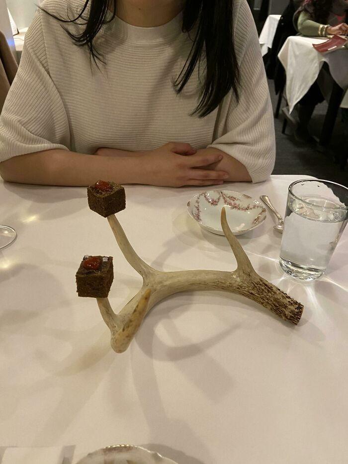 Dziczyzna serwowana na porożu jelenia