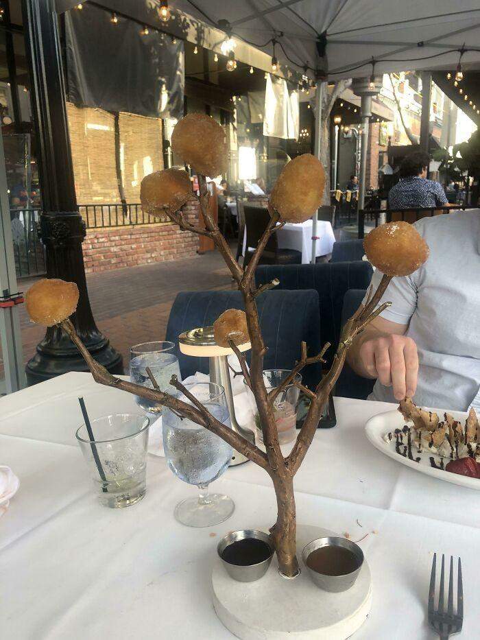 Jedzenie prosto z drzewa