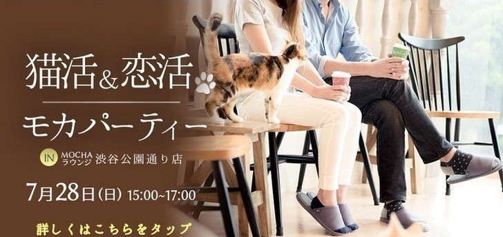 11. Możesz udać się tu na romantyczną randkę w połączeniu z zabawą i karmieniem kotów.