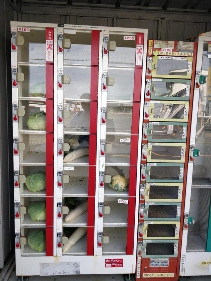 4. Automaty sprzedające warzywa i owoce
